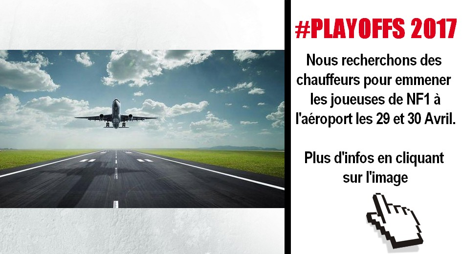 ARTICLE-NAVETTE N1F AEROPORT